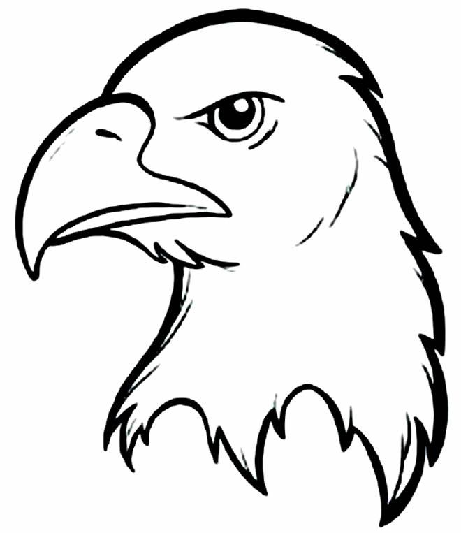 Molde de águia para imprimir