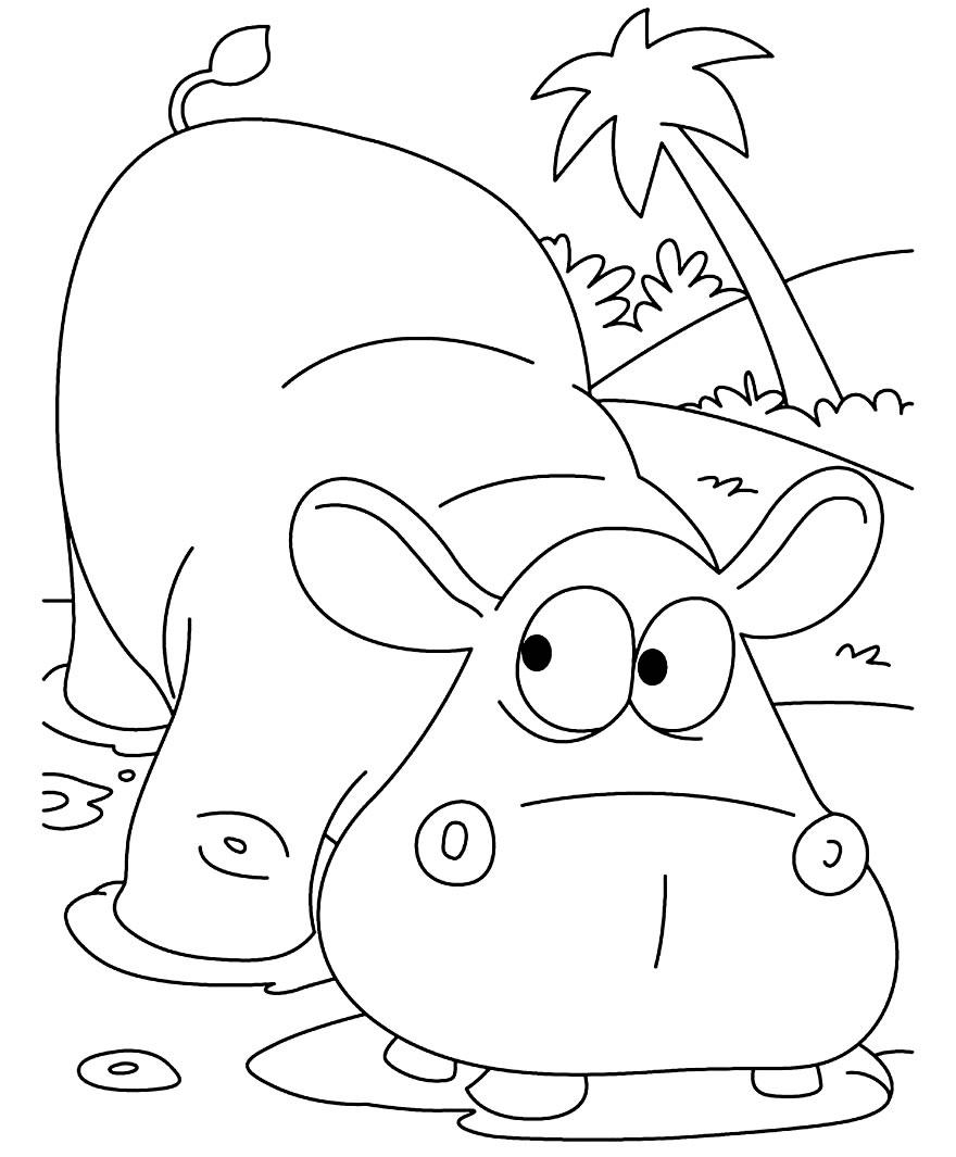 Desenho de hipopótamo para colorir