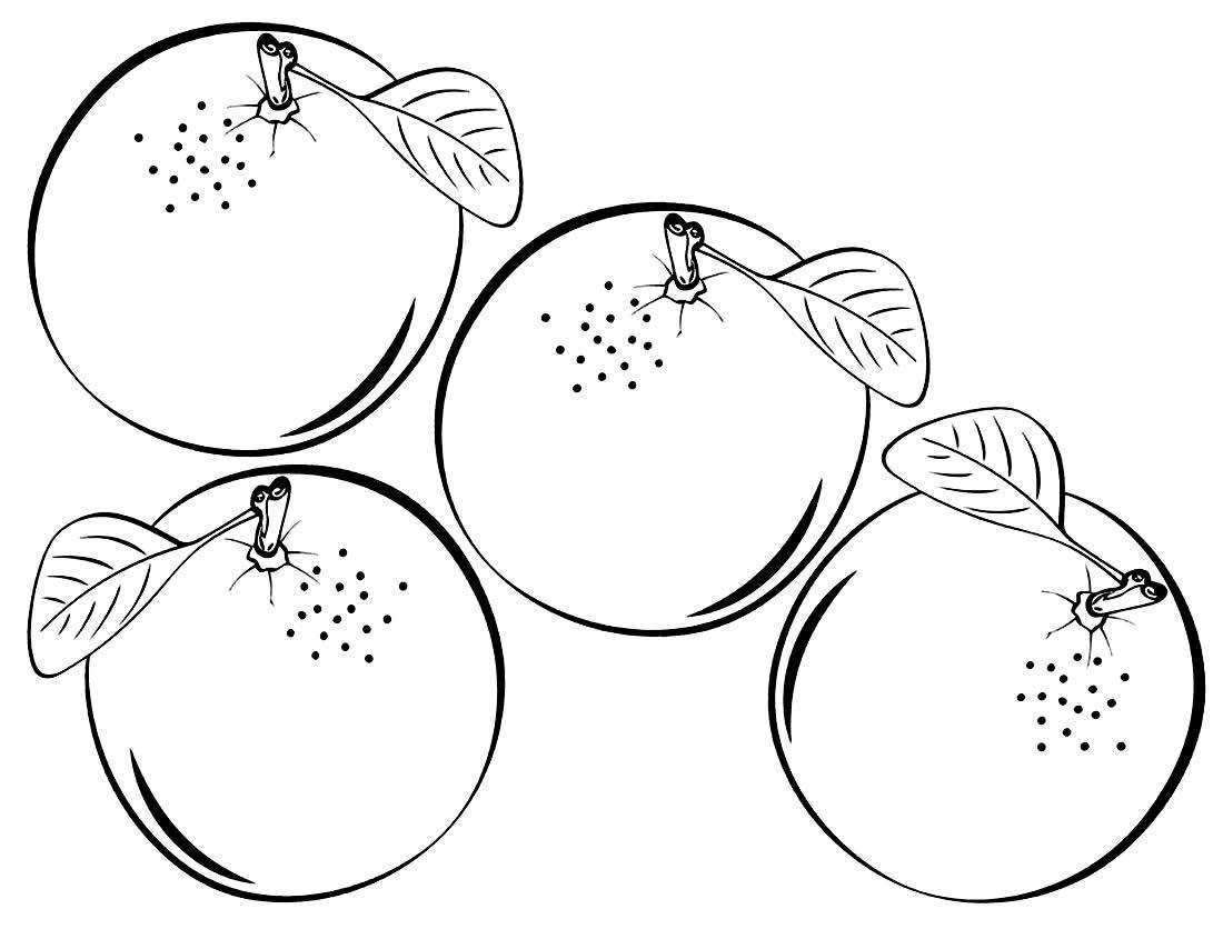 Desenho de Laranjas para colorir