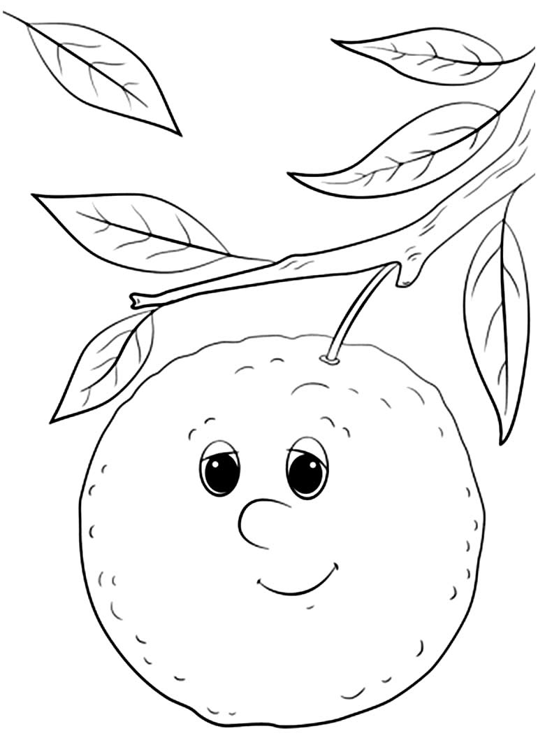 Desenho de Laranja para colorir