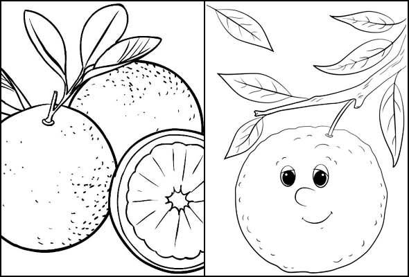 Desenhos de Laranjas para colorir