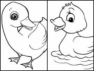 Desenhos de Pato para colorir