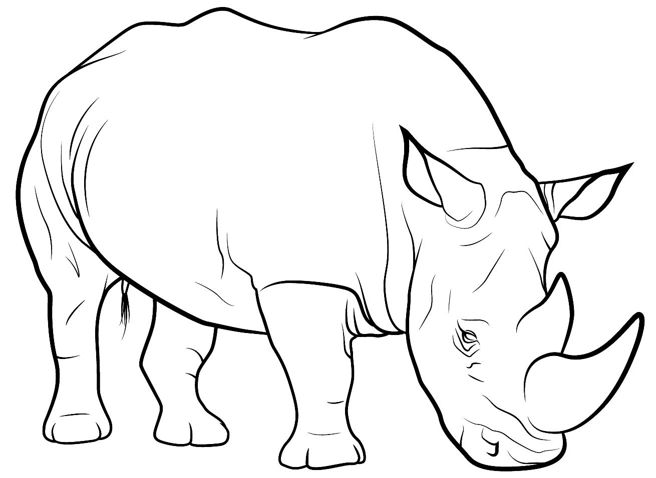 Imagem de Rinoceronte para pintar
