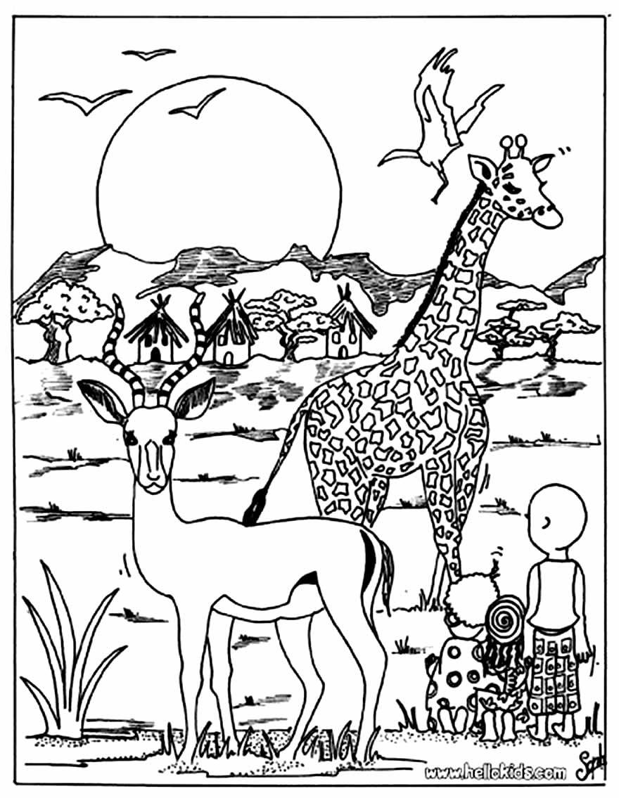 Desenho de bichos do safari para colorir