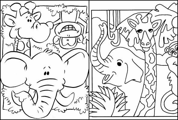 Desenhos de Safari para colorir