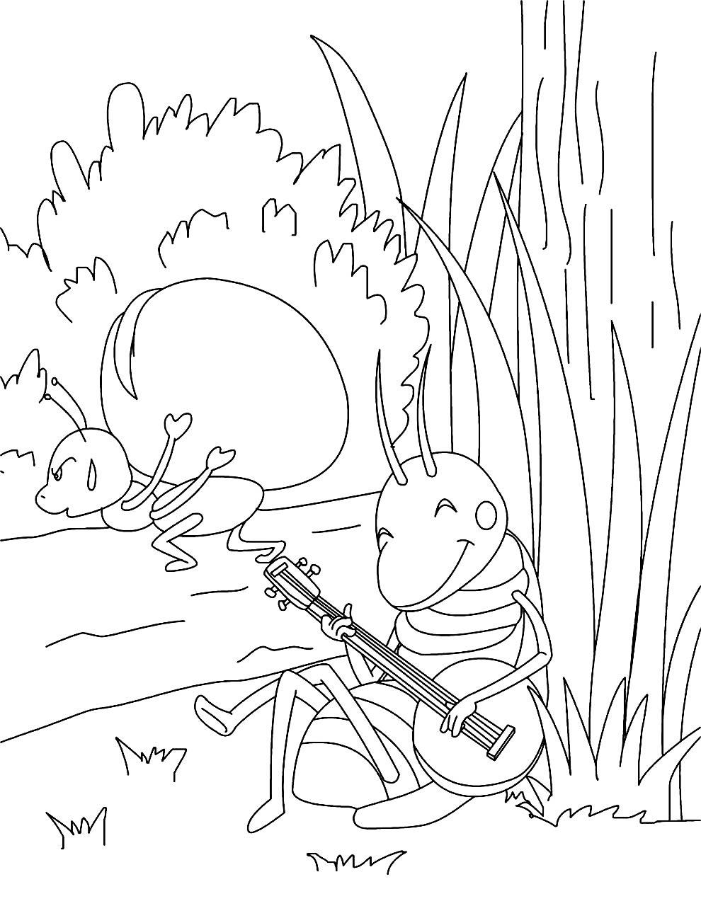 Desenho para colorir de Gafanhoto