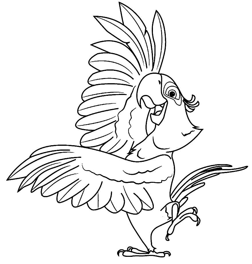 Desenho de Papagaio para colorir - Filme Rio