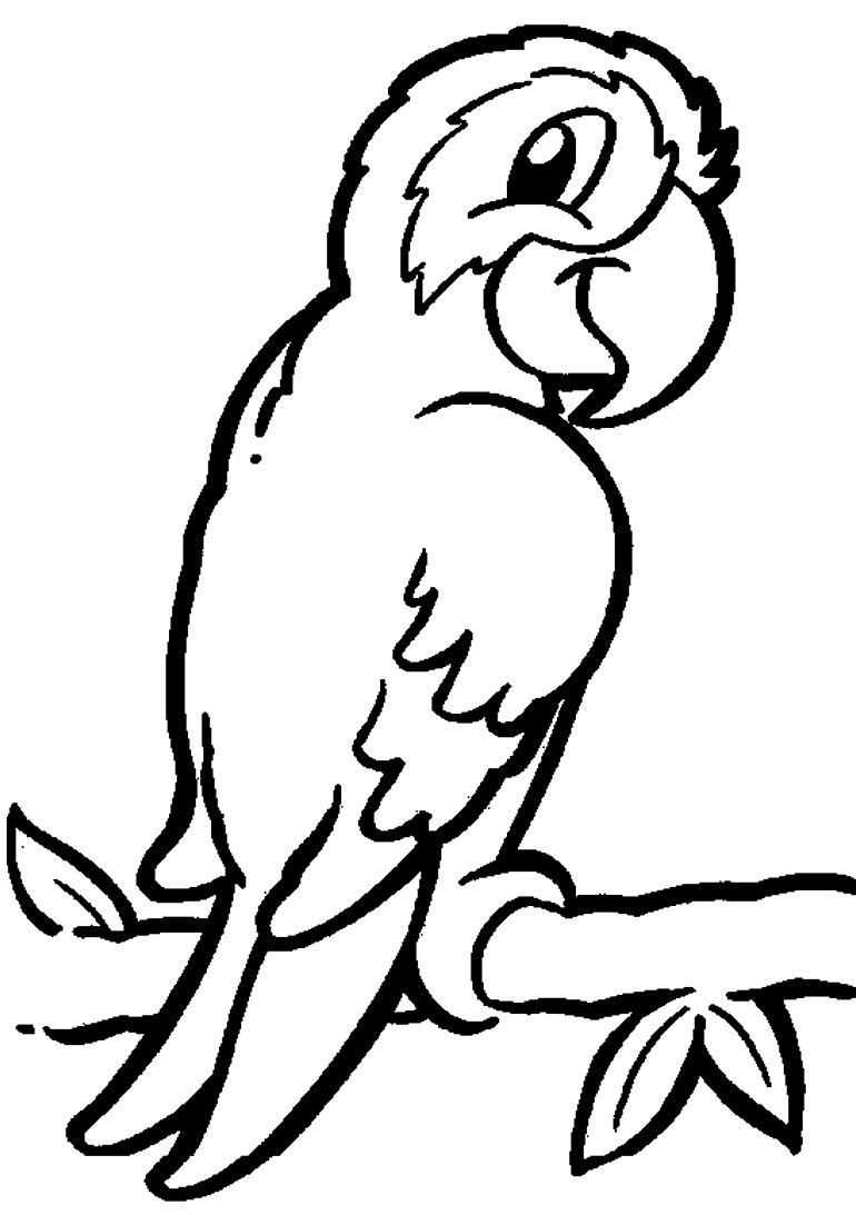 Imagem de Papagaio para colorir
