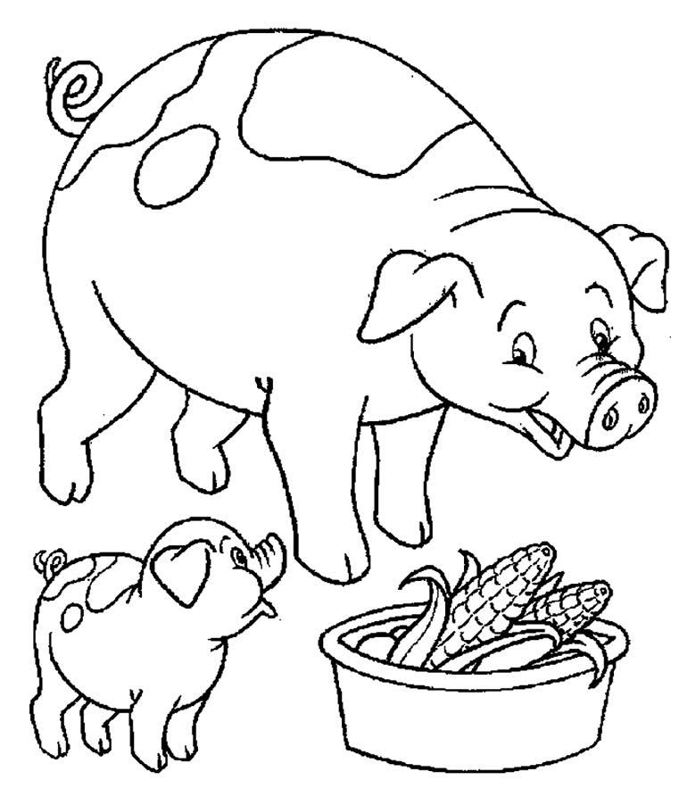 Desenho de porco para colorir