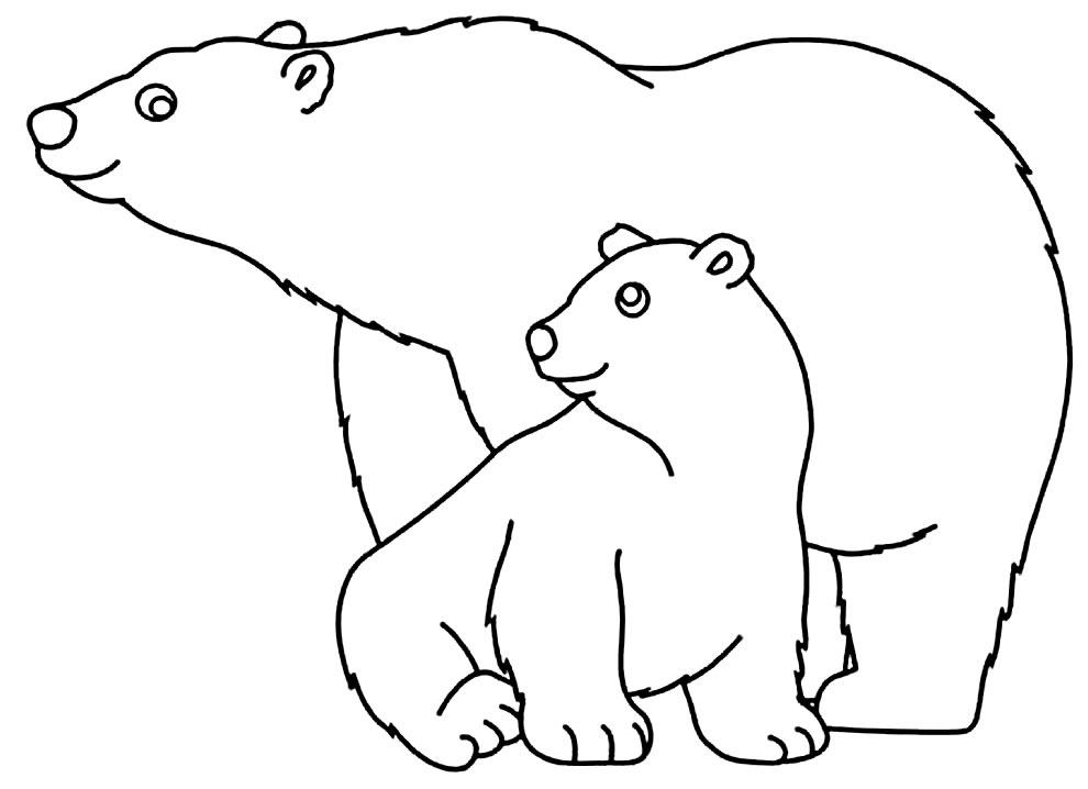 Desenho de Ursos para pintar