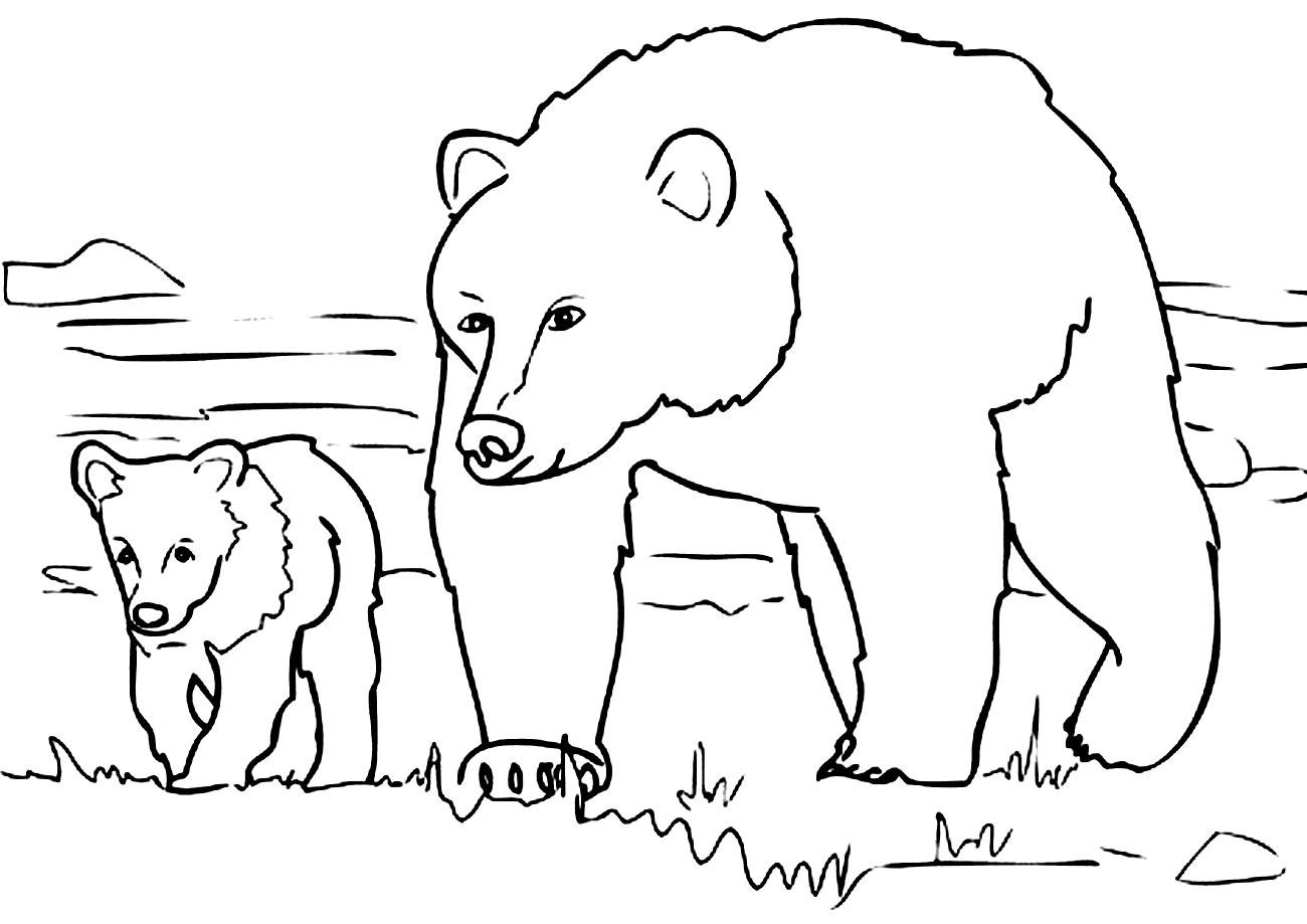 Imagem de Ursos para pintar