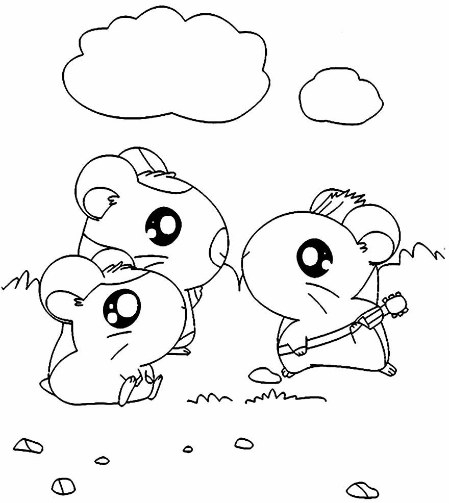 Imagem do Hamtaro para colorir