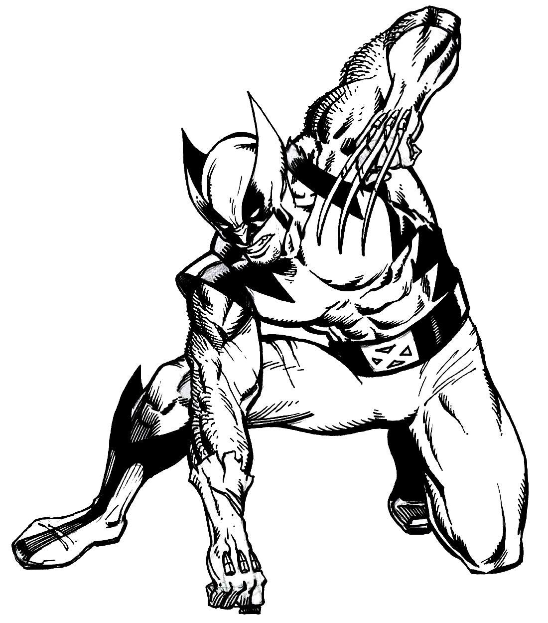 Imagem de Wolverine para imprimir e colorir