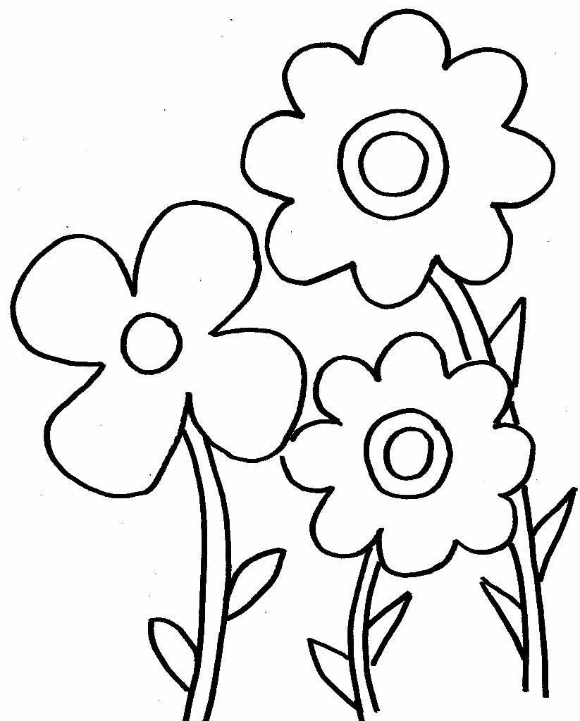 Desenho Flores para colorir