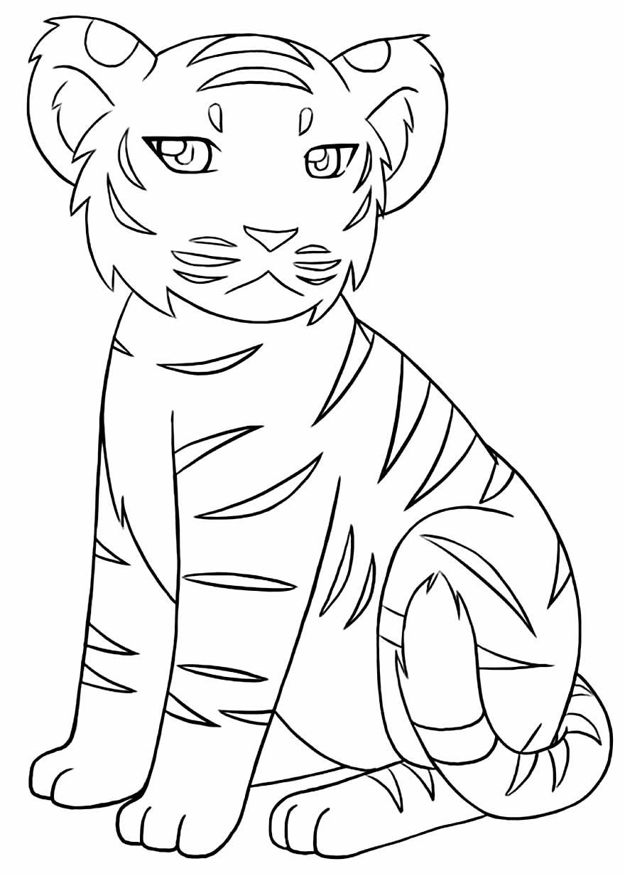 Imagem de Tigre para colorir e pintar