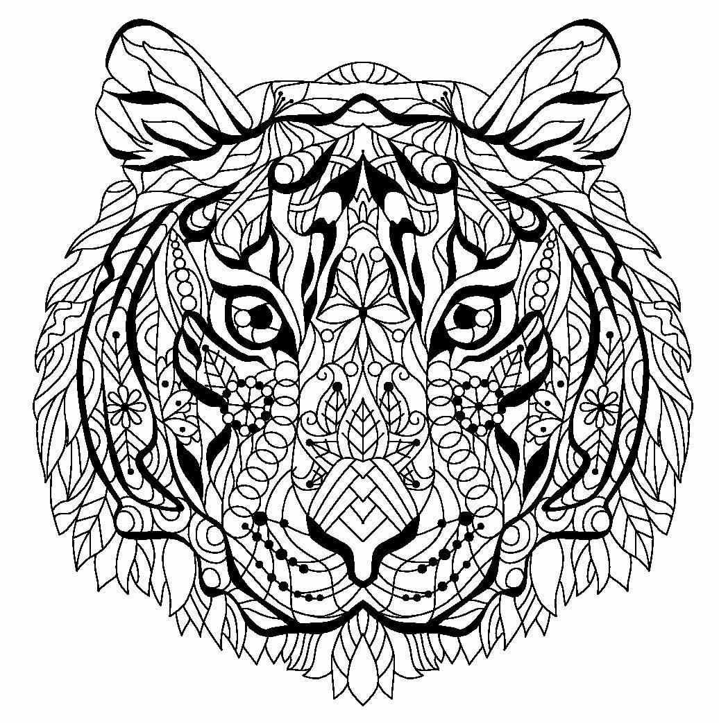 Imagem de Tigre para pintar