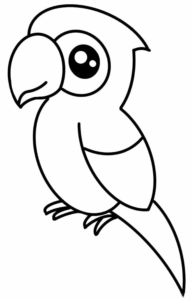 Desenho lindo de Papagaio