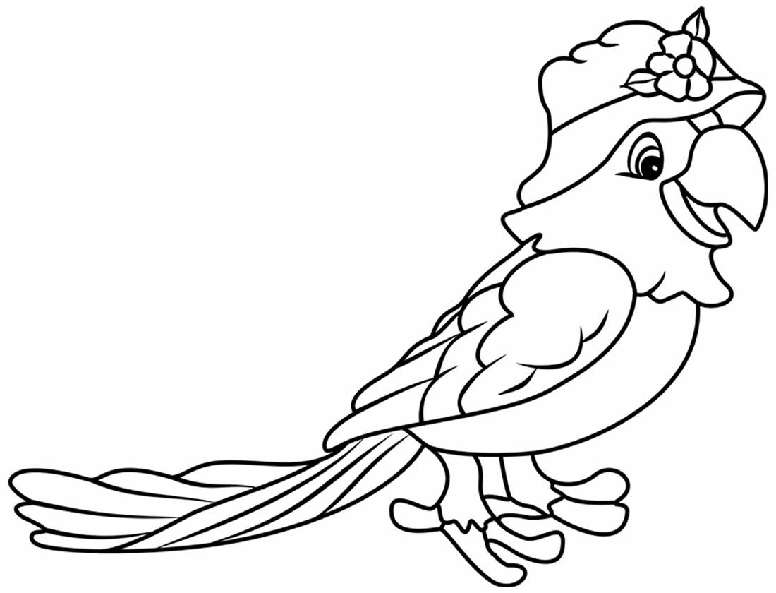 Desenho de Papagaio para pintar e colorir