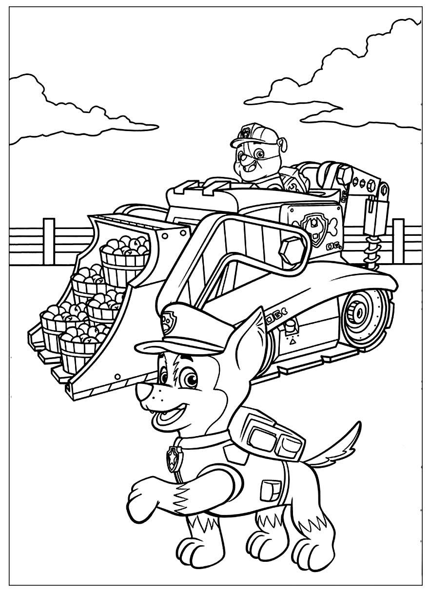 Imagem da Patrulha Canina para colorir e imprimir