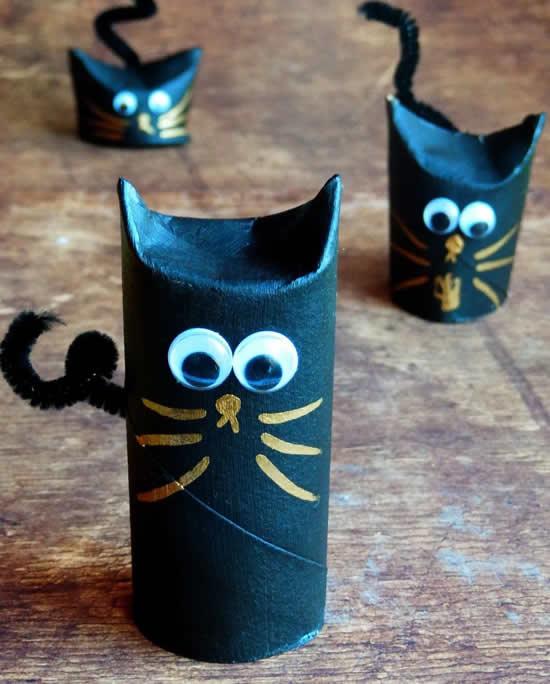Gatinhos com rolos de papel higiênico
