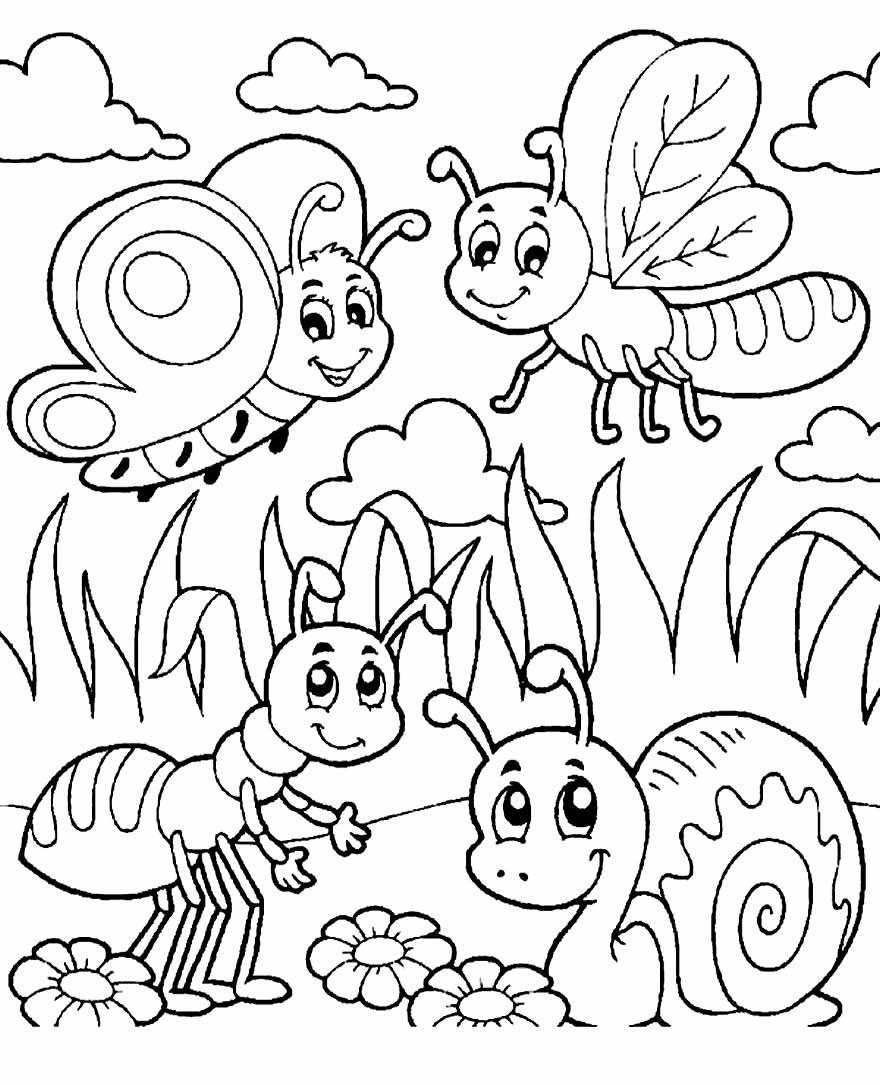 Desenho de insetos para pintar