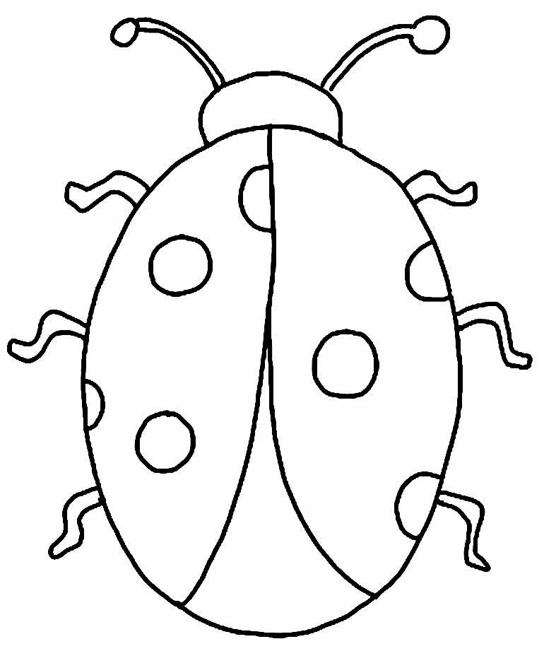 Desenho de joaninha