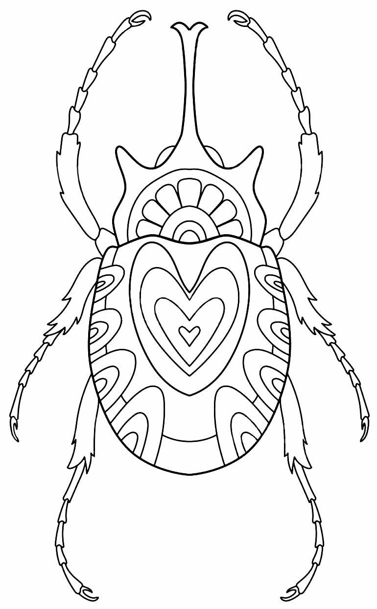 Desenho de besouro para imprimir e colorir