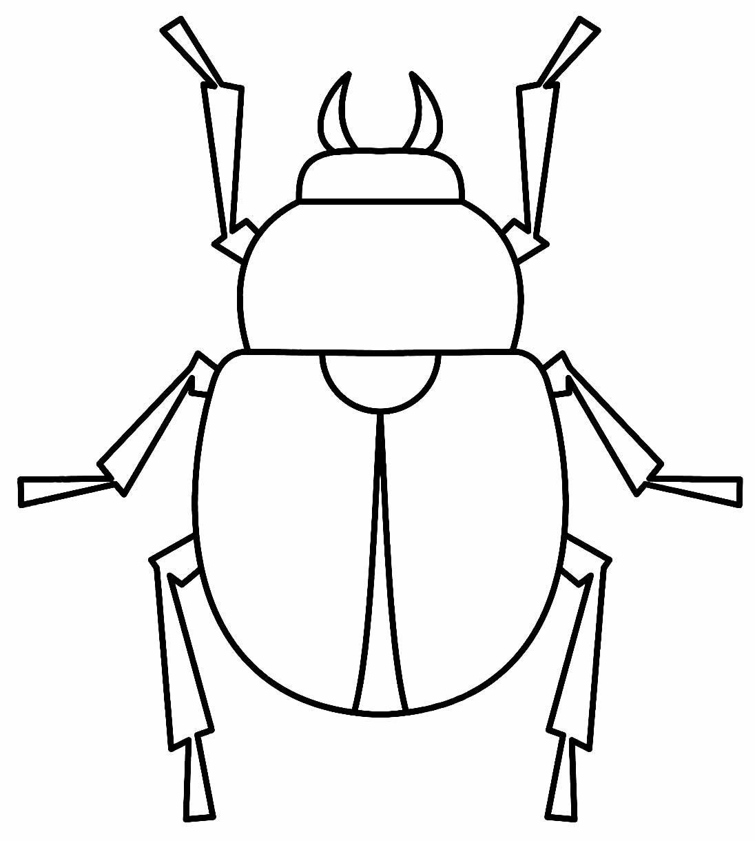 Desenho de inseto para pintar e colorir