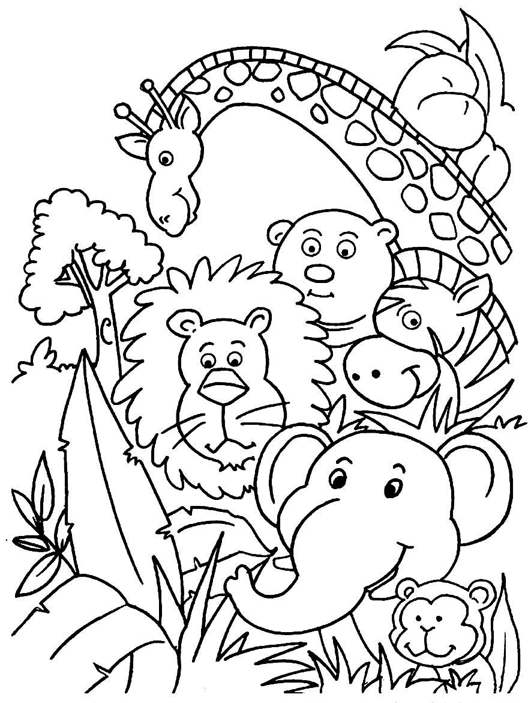 Linda imagem de safari para colorir