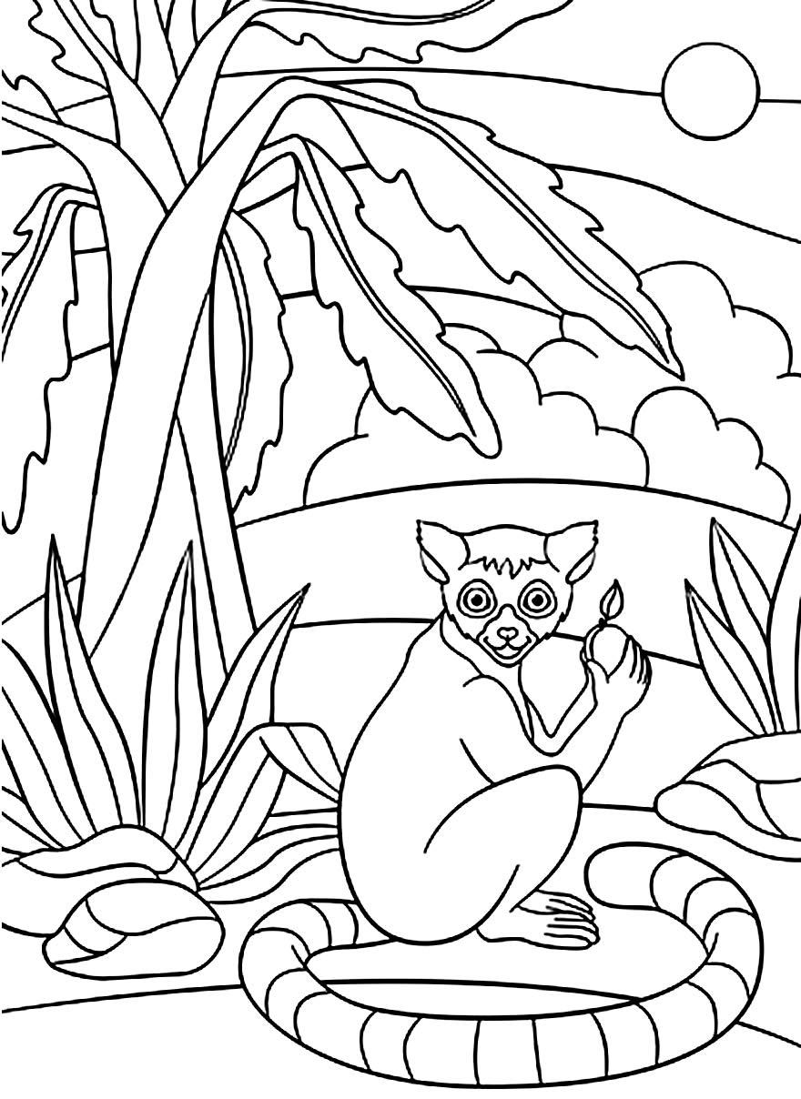 Desenho de animais do safari para pintar