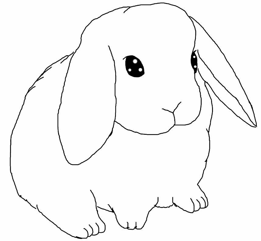 Desenho de coelhinho para pintar