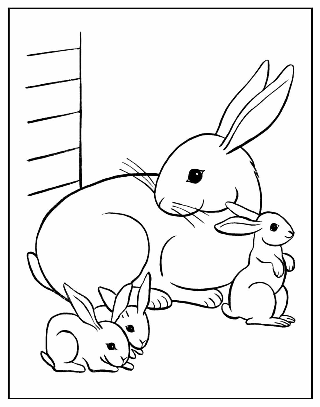 Desenho de Coelhinhos da Páscoa para colorir