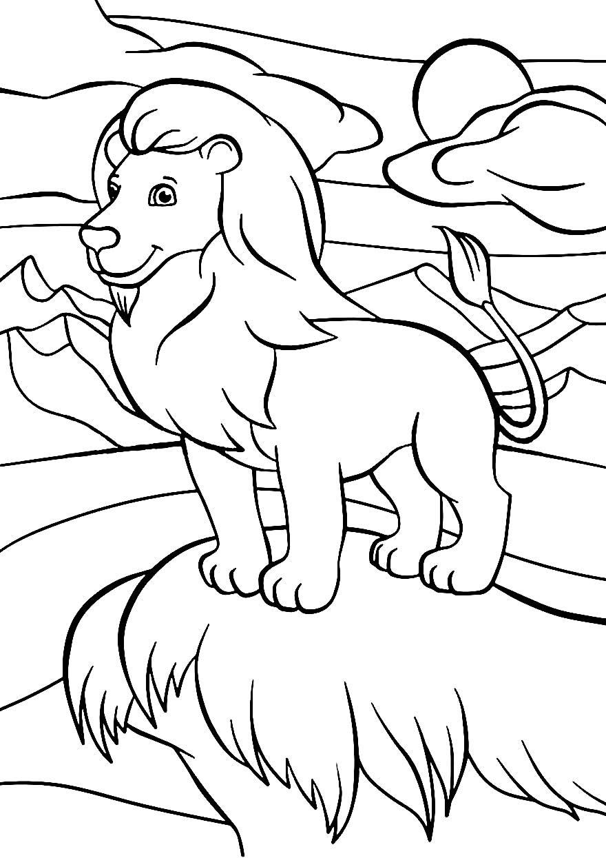 Leão para colorir