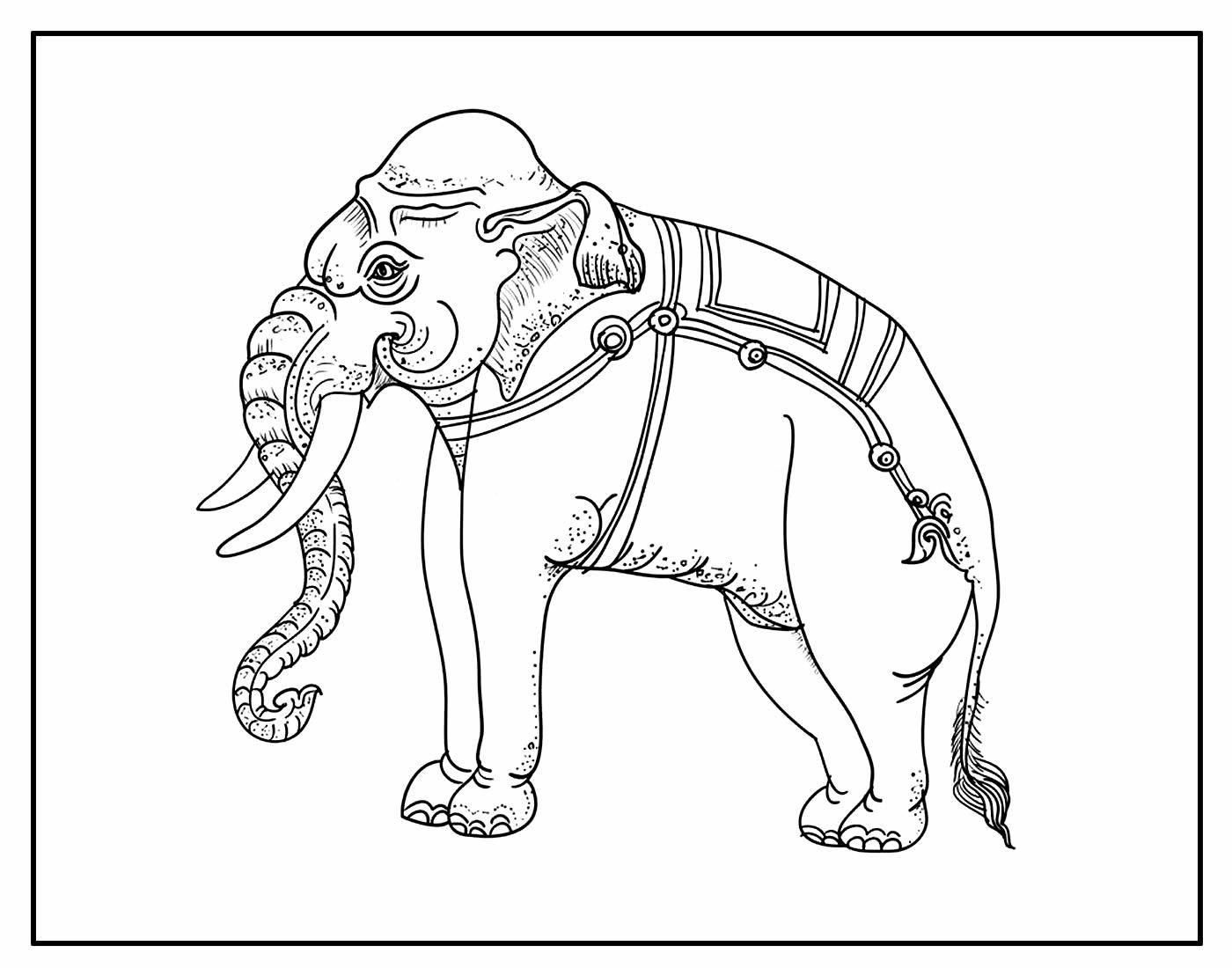 Desenho para pintar de Elefante Indiano