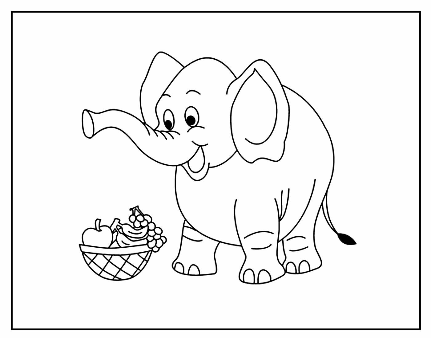 Desenho Elefante Pintar