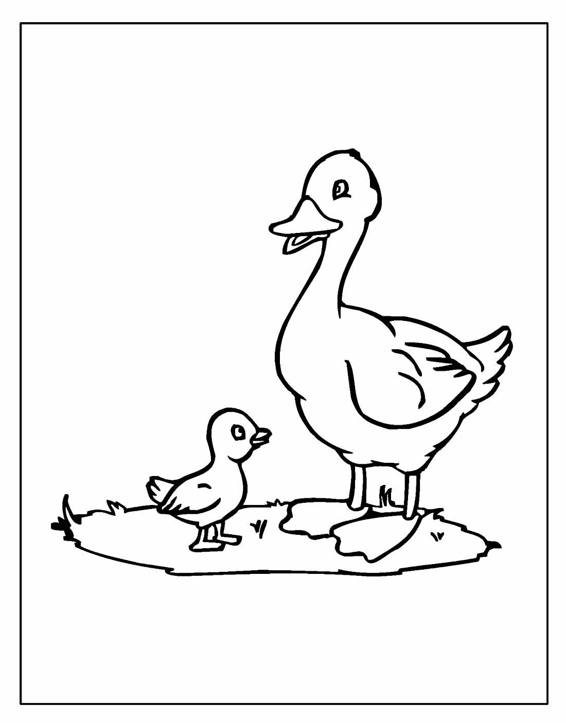 Desenhos para colorir de Pato