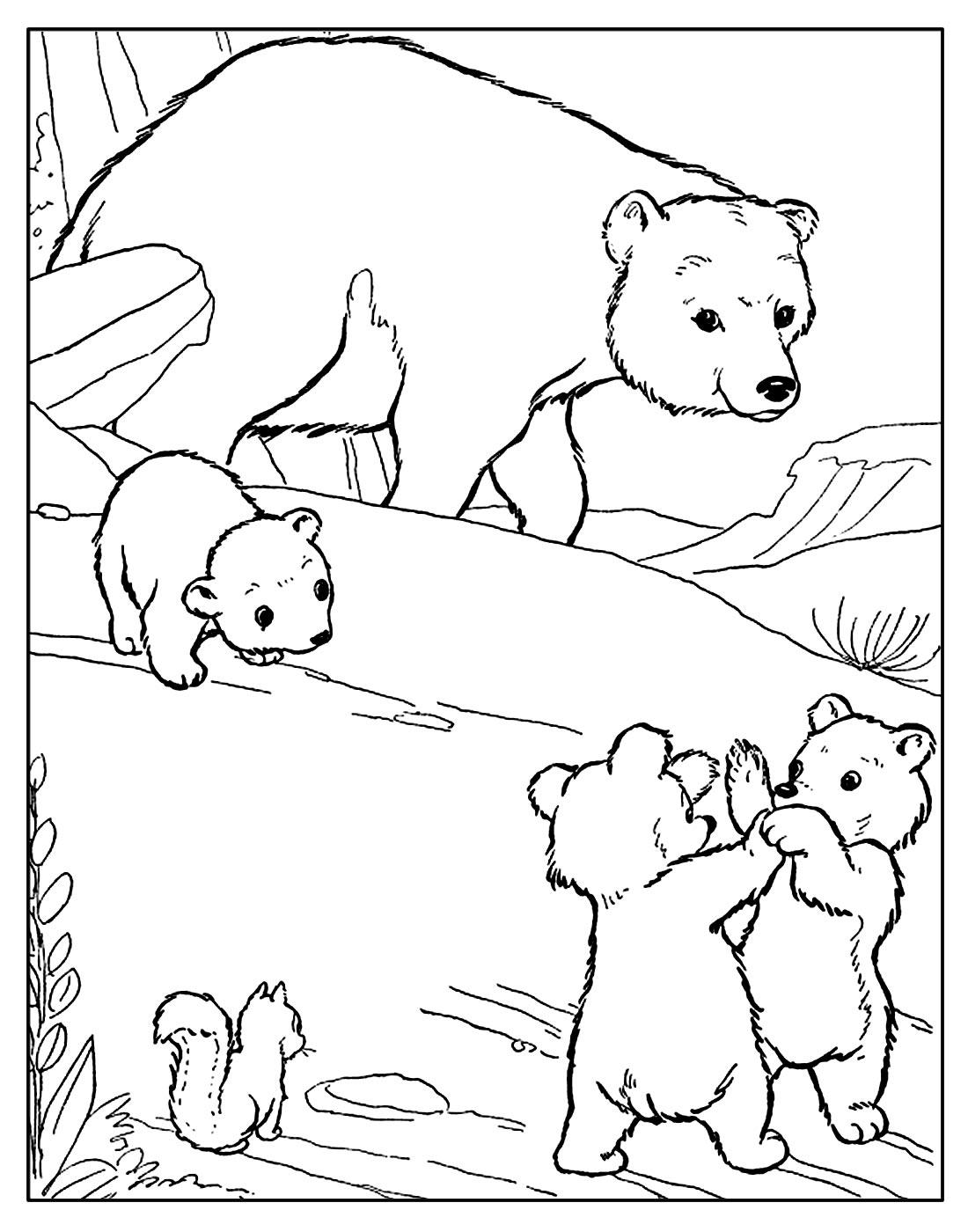 Página para pintar de Urso
