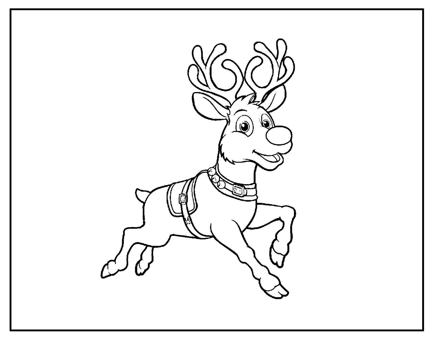 Página para colorir de Reina de Natal